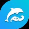 dolphinkeyboard01